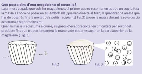 Què passa dins d'una magdalena al coure-la?
